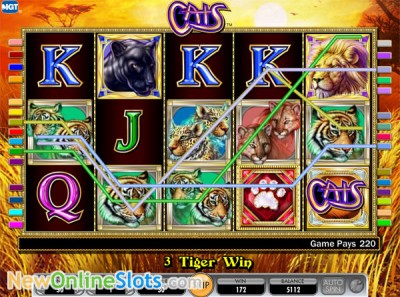 Cats slot by IGT image #1