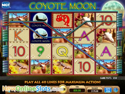 Coyote Moon Slot By Igt