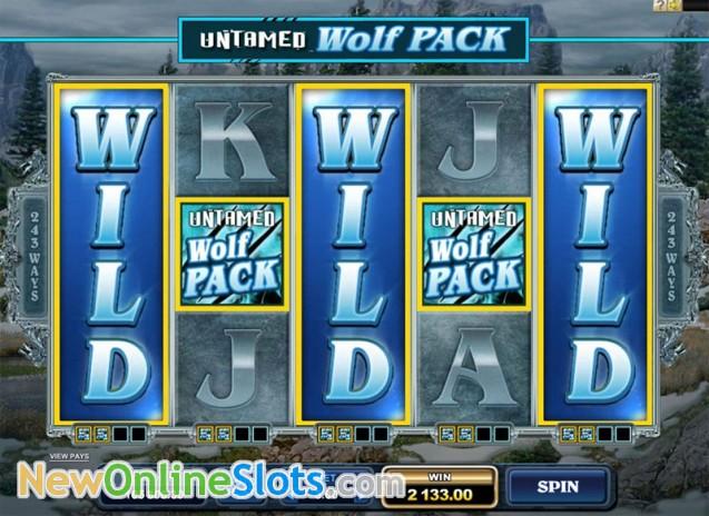 RewardsCasinocom  Casino Rewards Loyalty Program