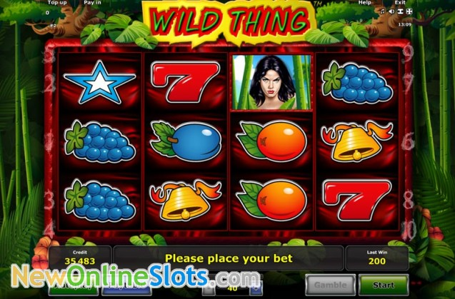 Play Wild Thing Slot Game Online | OVO Casino