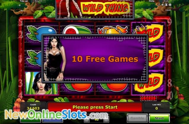 Play Wild Thing Slot Game Online | OVO Casino