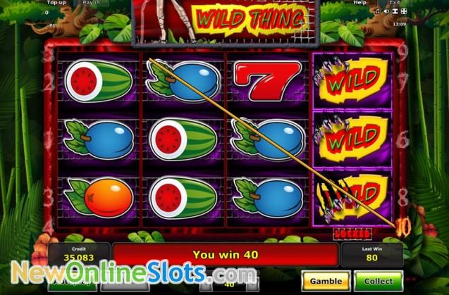 wild thing casino